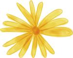 Logo Madia Potsdam